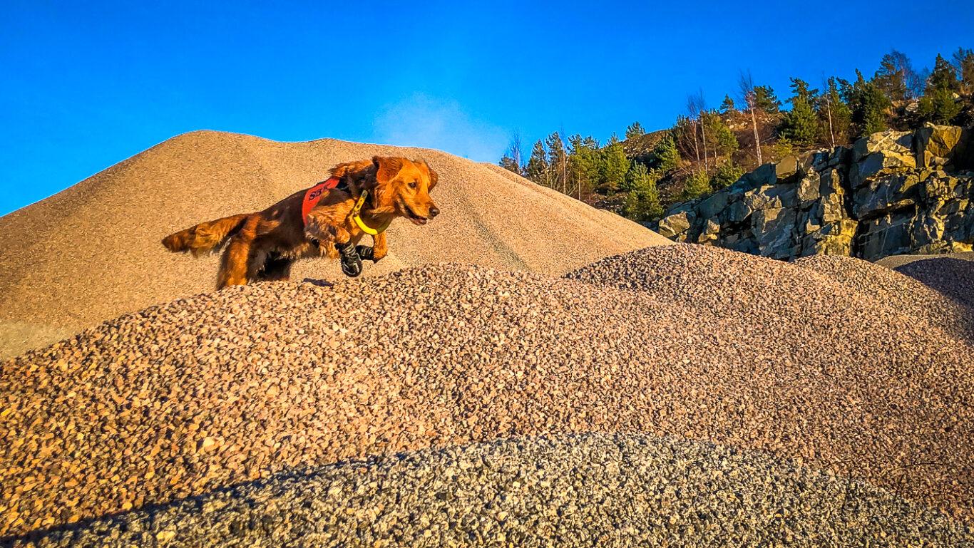 Mira letar efter figuranter mellan grushögarna i en bergtäkt i Bro.